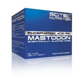 Mastodon Scitec Nutrition...