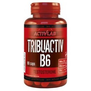 Tribuactive B6 Activlab...