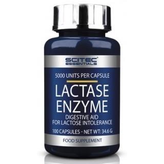 Lactase Enzyme Scitec...